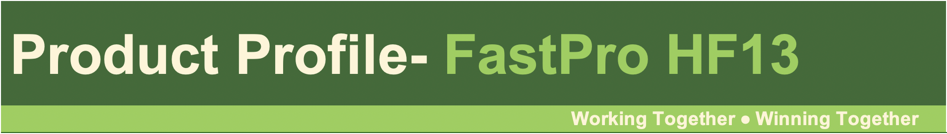 FastPro HF13