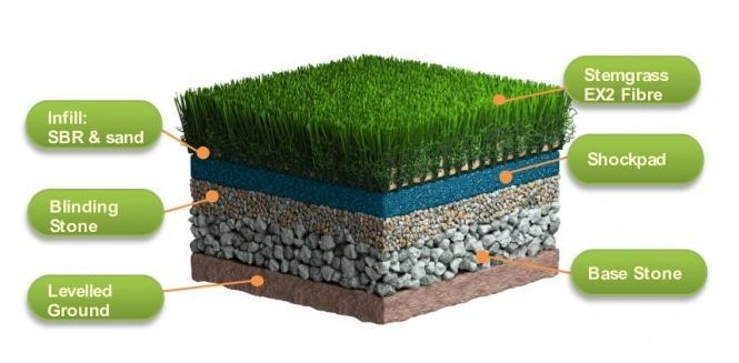 Stemgrass EX2 Product Review
