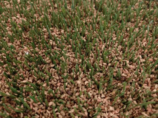Cork in artificial turf